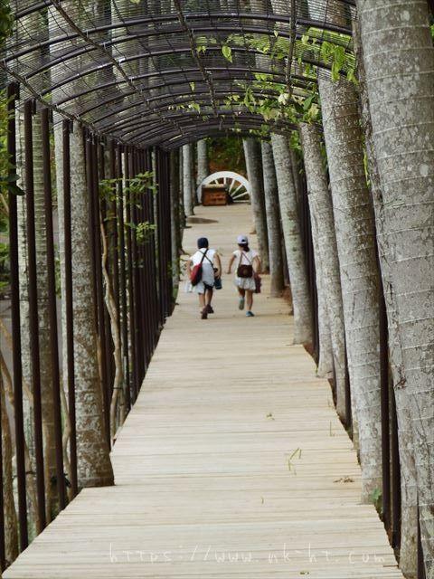 東南植物楽園水上楽園エリア回廊