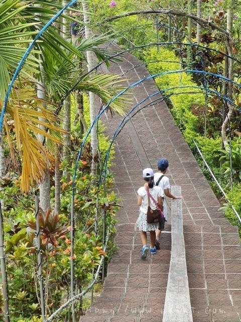 東南植物楽園の階段