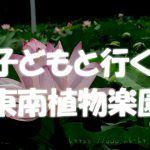 沖縄子連れ観光は東南植物楽園に行こう