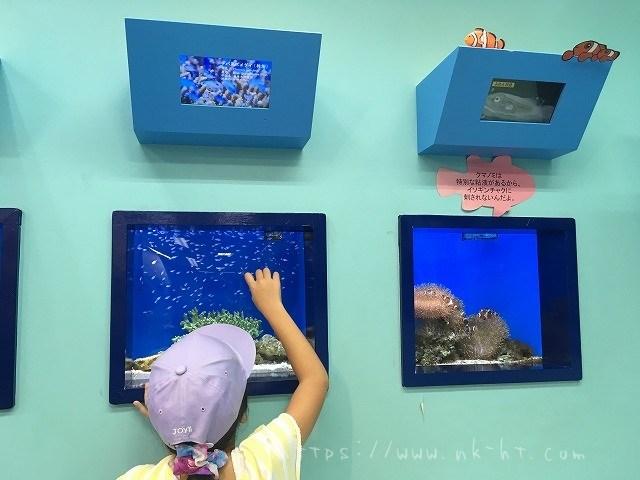 国際通りの美ら海水族館アンテナショップ内ミニミニ水族館