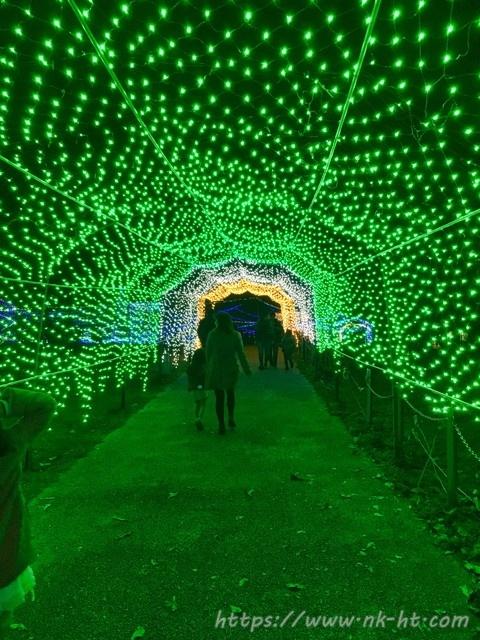 いとまんピースフルイルミネーションの光のトンネル